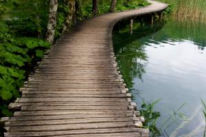 wooden walkway near water